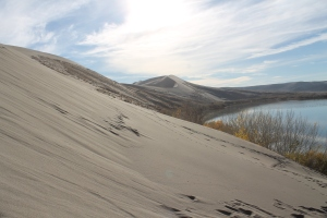 Windblown wonders.  Bruneau Sand Dunes, 2012.